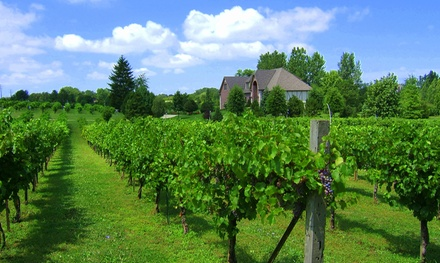 Valentino Vineyard and Winery