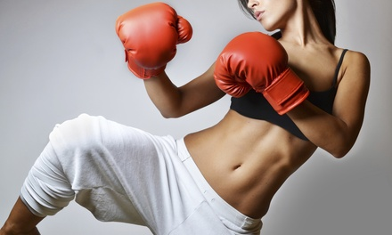 Kickboxing Woodlake-Briarmeadow
