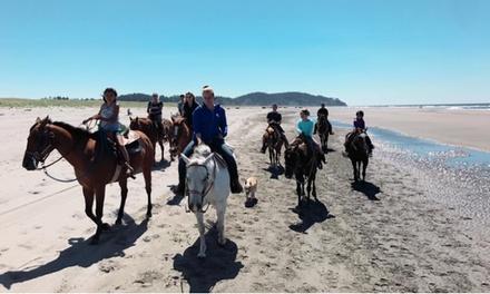 West Coast Horse Rides