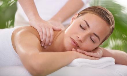 Palmetto Physical Medicine