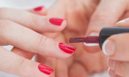 Larisa Nails