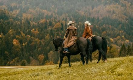 Bushkill Riding Stables