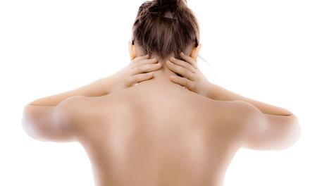 Spine & Muscle Rehabilitation