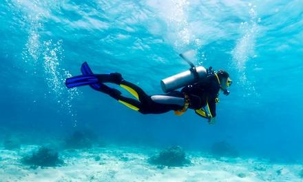 American Dive Zone