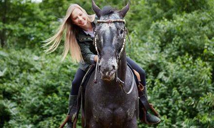 Rushlow's Arabians