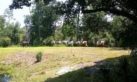 Equestrian Quest Stables