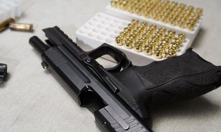 Article 2 Gun Range