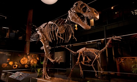 Houston Museum of Natural Science - Sugarland