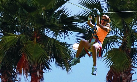 Daytona Beach Zipline Adventure