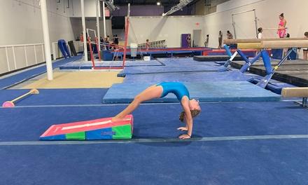 Envi Gymnastics