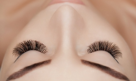 Lux Lashes by P