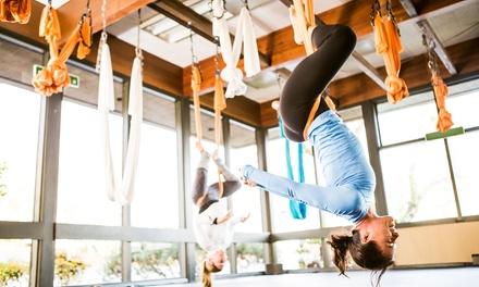 Scleranthus Aerial Yoga