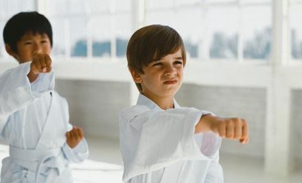 Family Karate Center