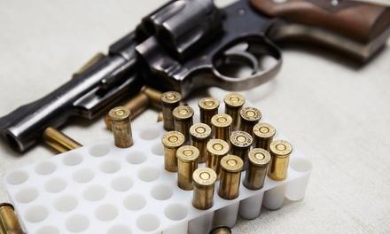 Greater Boston Gun Safety School