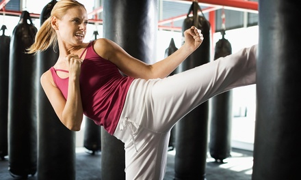 Martial Arts Fitness Kickboxing Centers