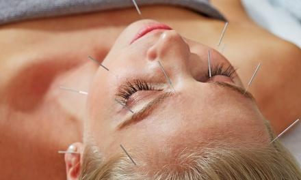 Dr. Zerquera's Acupuncture & Oriental Medicine
