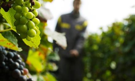 Buhman Estate Vineyards