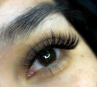 Treasure Lash