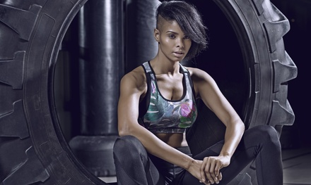 365 Fitness Now