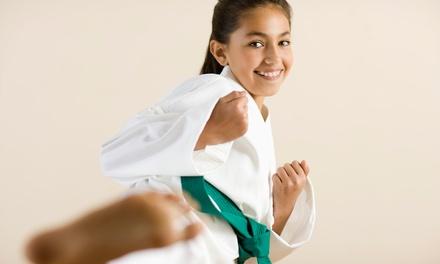 American Sports Karate