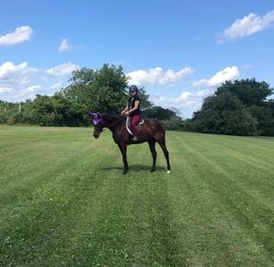 AKB horsemanship